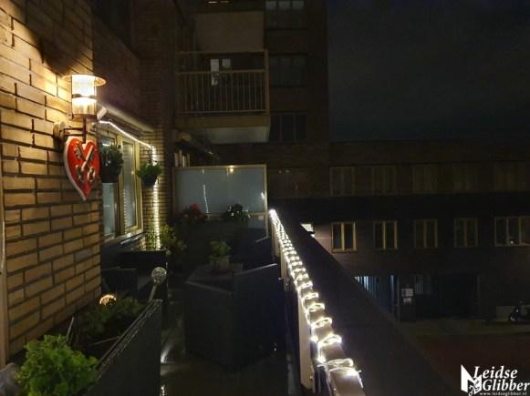 Balkon 2020 (7)