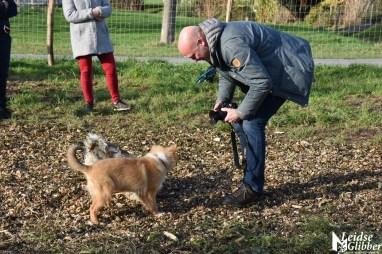 Honden speelveld Zoeterwoude (54)