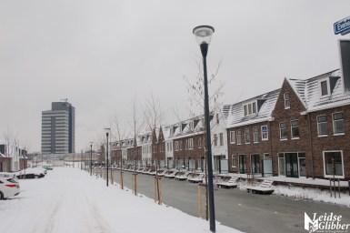 Sneeuw2. 15 jan (3)
