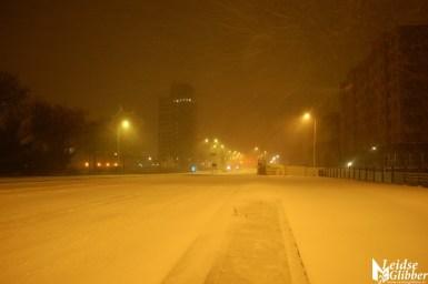 sneeuw15jan (12)