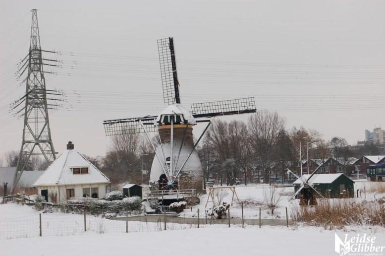 Sneeuw2. 15 jan (8)