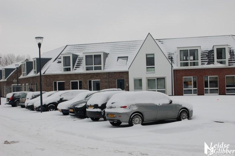Sneeuw2. 15 jan (6)