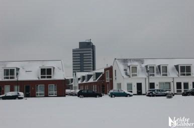 Sneeuw2. 15 jan (1)