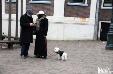 Rik van Boeckel popdichter (3)