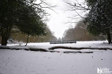 6 Sneeuw De Leidse Hout (23)