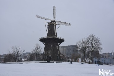 5 Sneeuw molen de Valk e.o (12)