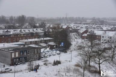 sneeuw (50)