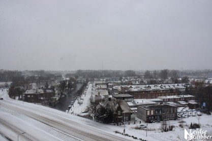 sneeuw (34)