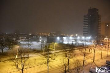 sneeuw (23)