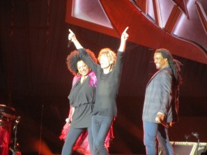 The Rolling Stones (14)