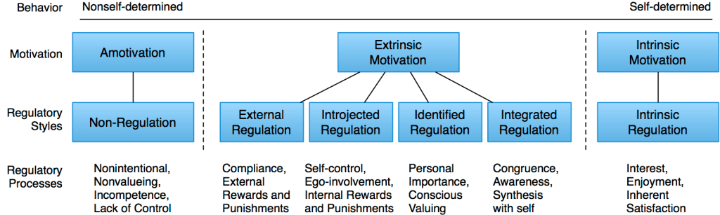 self-determination-theory-intrinsic-extrinsic-motivation-continuum