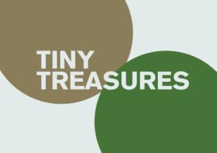 LIVE_Tiny-Treasures