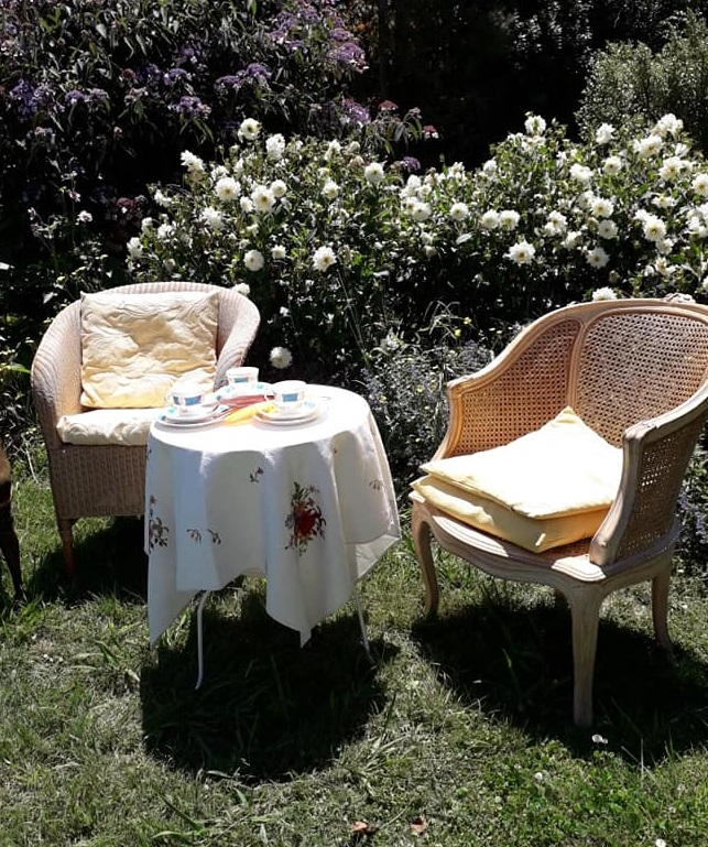 Photograph of can chairs in caroline Bagshaw's garden.