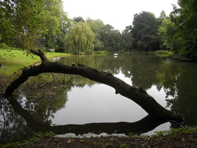 7.lake