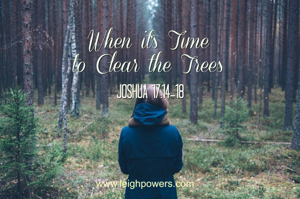 When it's time to clear the trees (Joshua 17:14-18)