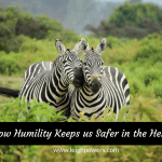 How Humility Keeps Us Safer in the Herd (1 Peter 5:1-10)