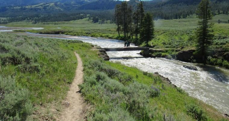 Yellowstone-Day 3 Lamar Valley