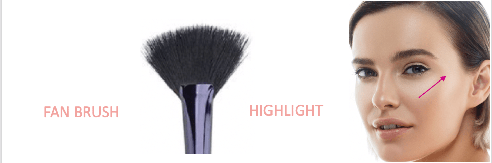 Motives Fan Brush