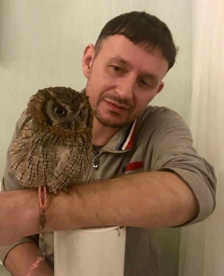 Squirrel, a female Central American Tropical Screech Owl Akiba Fukurou Owl Cafe Tokyo