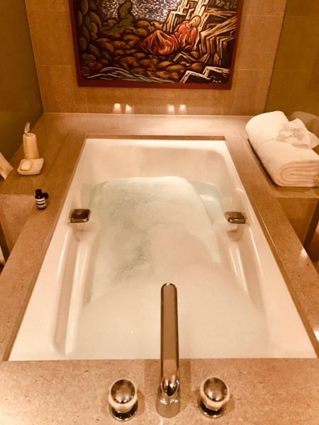 Bathroom Twin Deluxe Bedroom Park Hyatt Tokyo