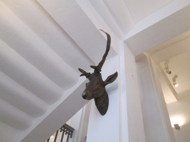 Antlers at Moritzburg. (Photo: Lito Seizani)