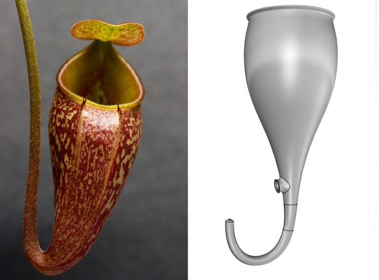 """Nepenthes design, © Marilu Valente, is inspired by a carnivorous plant and the idea that """"in nature, there is no waste,"""" everything is cyclic."""