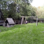 swingset in a garden