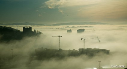 Cranes in the mist