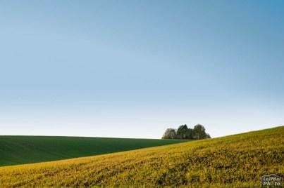 Landscape lines 2