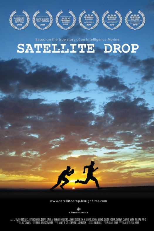 Satellite Drop Official Poster with laurels
