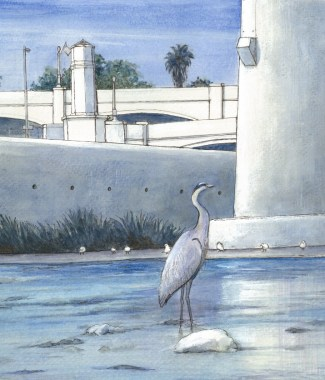 Grey Heron, Hyperion Bridge Los Angeles  (715x1024)