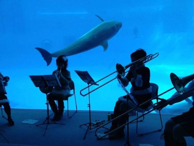 名古屋港水族館 クリスマス 混雑