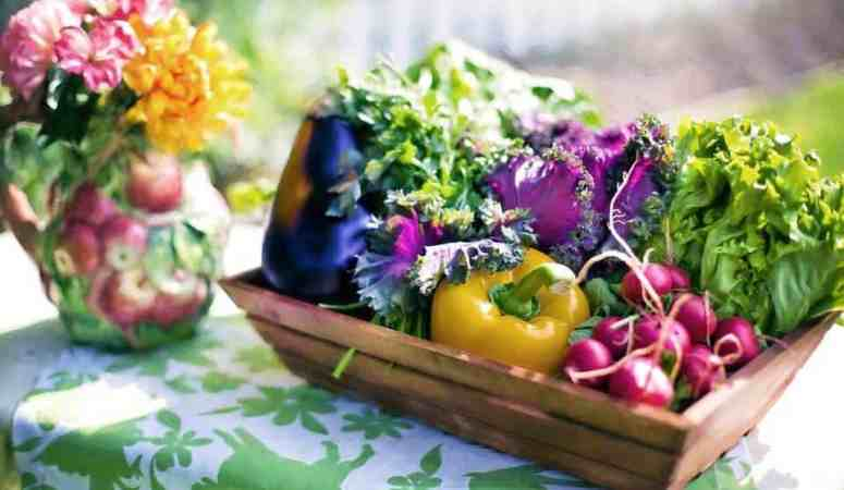 5 Important Things People Forget When Growing Vegetables
