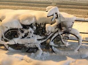 Shin Meji Dori - un vélo disparait...