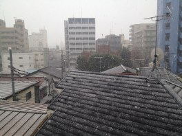 Temps exceptionnel sur Tokyo, avec des tempêtes de neige