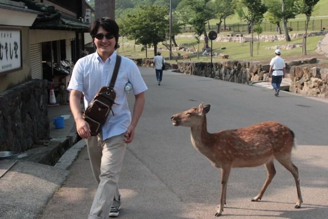 Nara - Daims