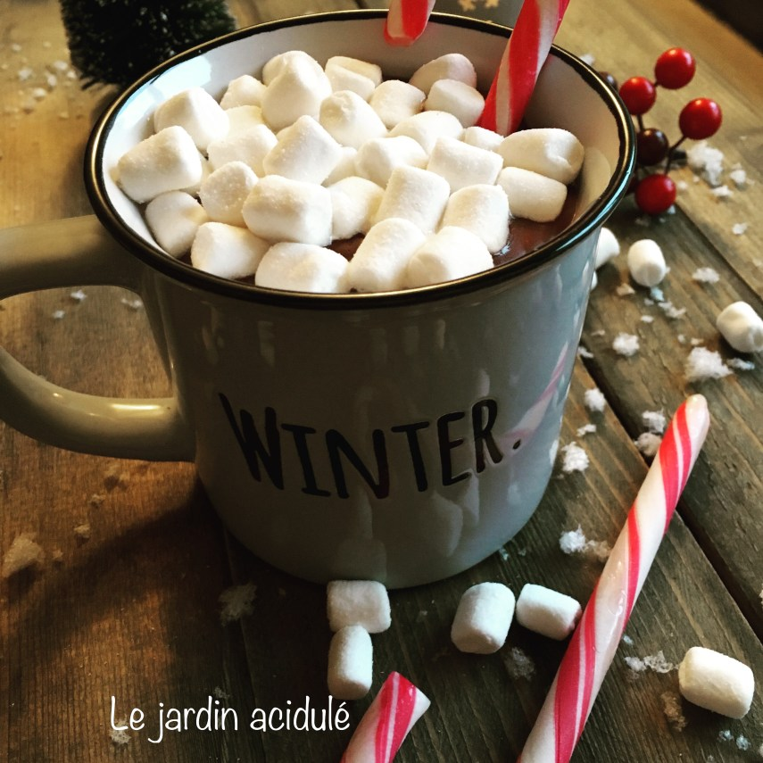 Hot chocolate - chocolat chaud