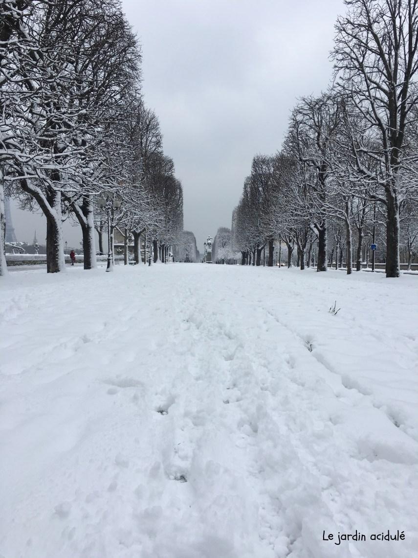 Paris neige 16.jpg