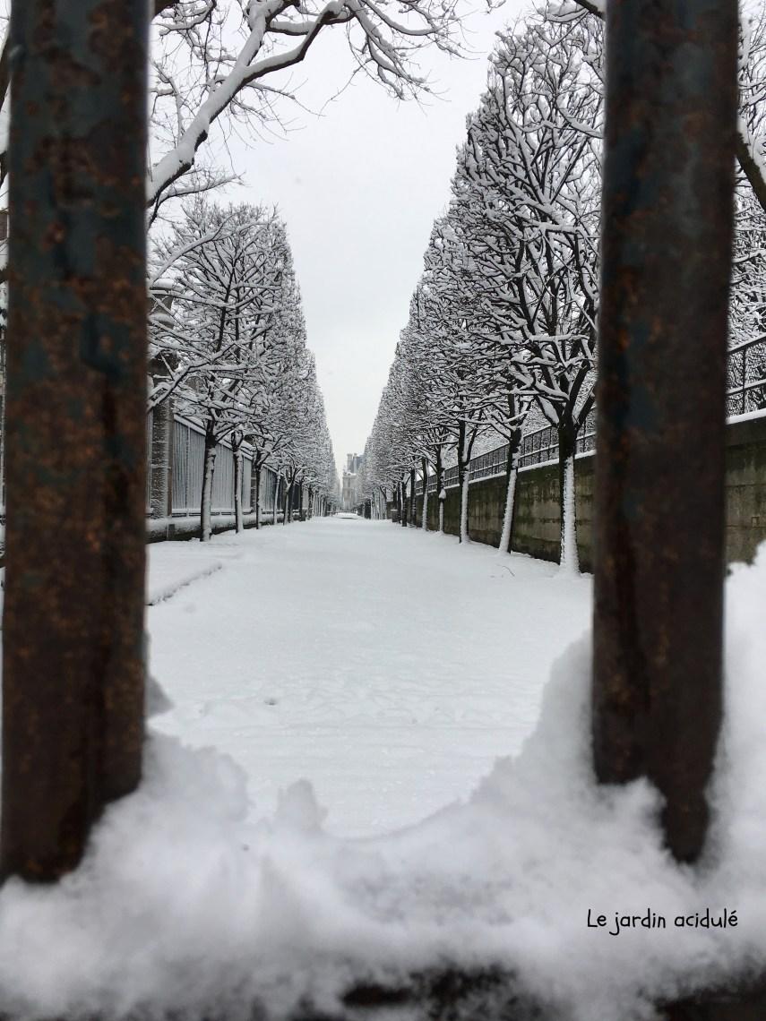 Paris neige 19