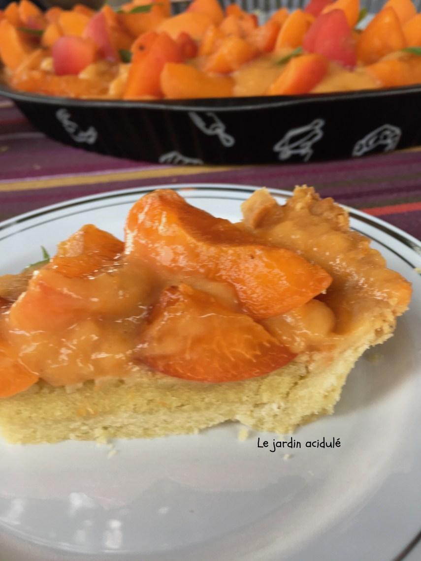 Tarte aux abricots 4