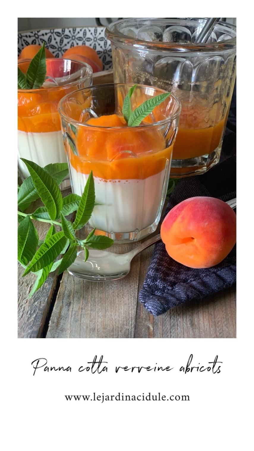 panna cotta verveine abricot