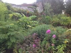 été 2014 le jardin d'épices Laurent Lafaille
