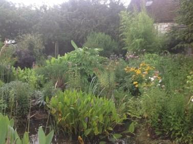 Bassin, pondéteria le jardin d'épices Laurent Lafaille