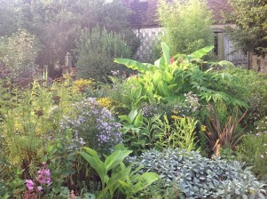 Massif d'été le jardin d'épices Laurent Lafaille