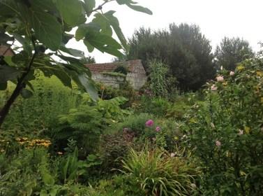 massifs fin d'été le jardin d'épices Laurent Lafaille