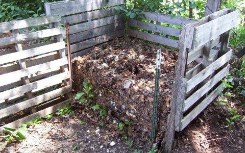 Le compost : un trésor au jardin