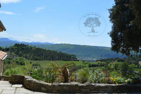 gîte de Belley 3 étoiles vue imprenable sur la vallée de la Durance et les fleurs extérieures à le jas de Belley à Montfort 04600