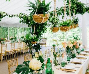 Knot and Pop - Wedding Planner