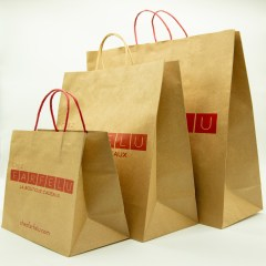 120g brown kraft paper with 1-colour logo print and twisted paper handles