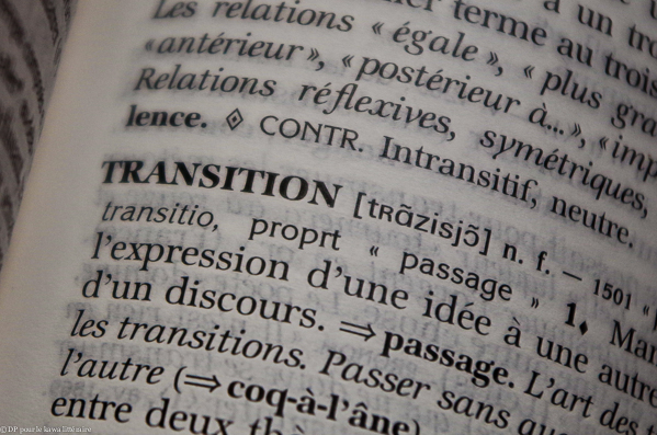 transition-bis-24052014-0241.jpg